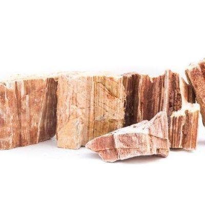red-petrified-wood-11803477901393